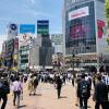 Accompagnement Keikaku Japon juillet 2019 - 1