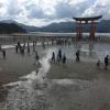 Accompagnement Keikaku Japon août 2018 - 2