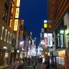 Accompagnement Keikaku Japon décembre 2018 - 1