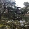 Accompagnement Keikaku Japon janvier 2019 - 1