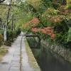 Accompagnement Keikaku Japon novembre 2019 - 1